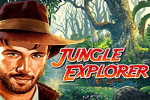 автоматы Jungle Explorer